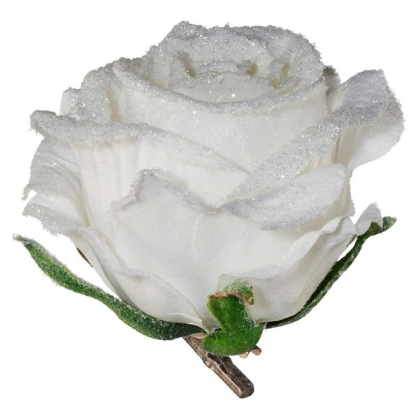 Rose Rose I Weiß